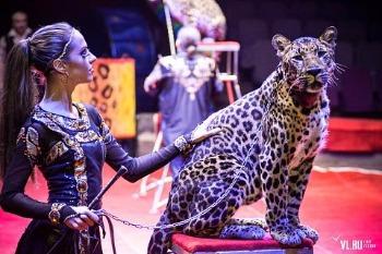 С какого возраста можно ребенку в цирк